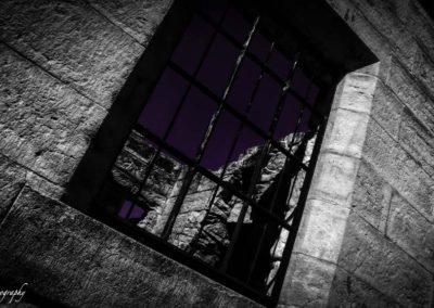 purple-room