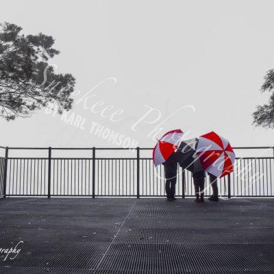 Fitzroy Falls NSW